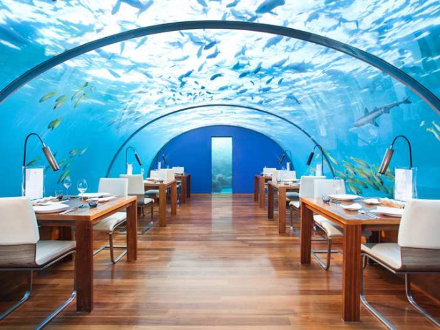 Dinner for two – under the sea! The underwater restaurant that will leave your head swimming