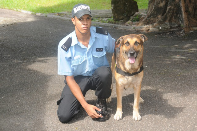 Police dogs hard at work keeping Seychelles safe
