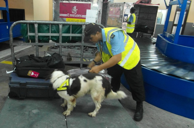 Determined to sniff out illegal cargo -Seychelles joins Eastern and Southern African states in operation