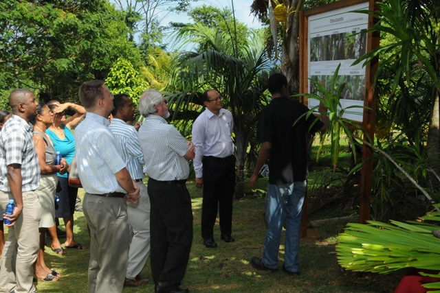 Unique forest of the Seychelles' rarest species - First Arboretum opens