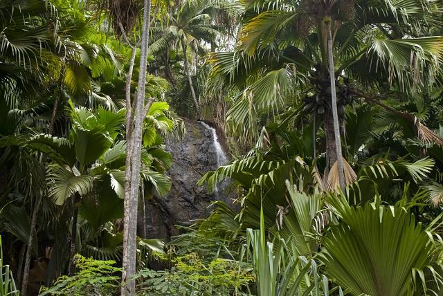 L'ONU s'engage à hauteur de 10 millions de dollars, dans la protection de l'environnement des Seychelles