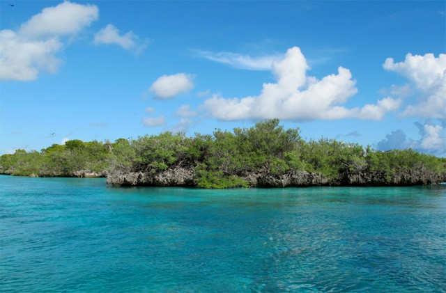 IUCN commends SIF after findings rate Aldabra Atoll and the Vallée de Mai as effectively managed