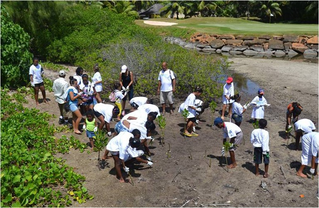 Celebrating World Wetlands Day: for Seychelles, the future of wetland protection lies with hotels