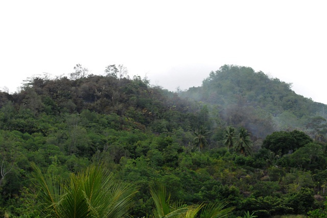 Seychelles firefighters battling forest fire at Port Launay