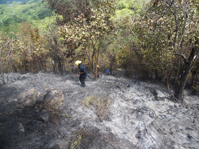 Ban on lighting fires enforced in Seychelles following weekend bushfires