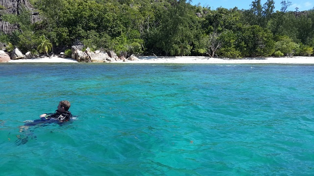 How will corals survive in 200 years?  Earthwatch expedition studies possibilities in Seychelles