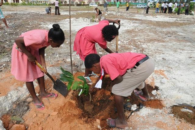 Prêts pour des mesures concrètes sur le changement climatique : les citoyens des Seychelles partagent leurs points de vue dans la perspective de la COP 21