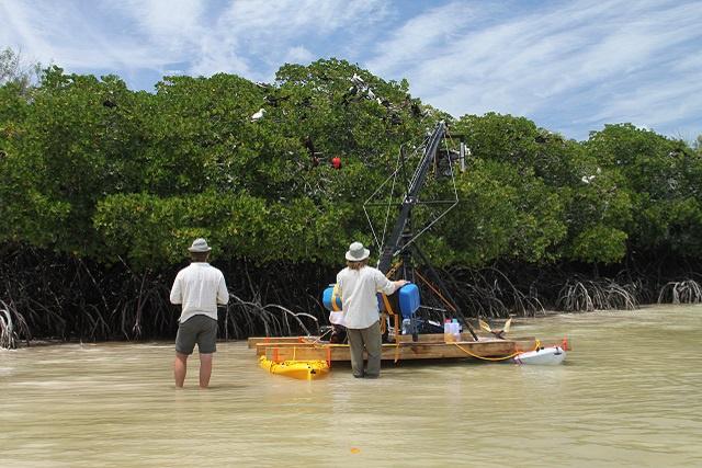 L'aventure de la nature sauvage des Seychelles « Aldabra - Once Upon an Island »  bientôt à l'écran.