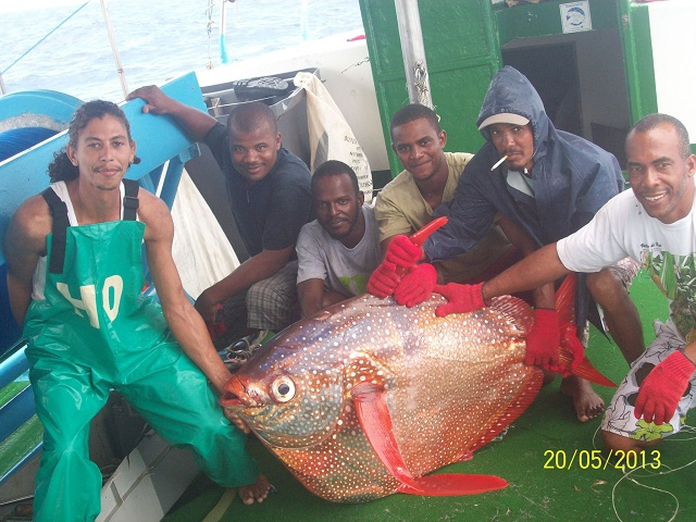 Seychellois fisherman makes rare catch of warm-blooded moonfish