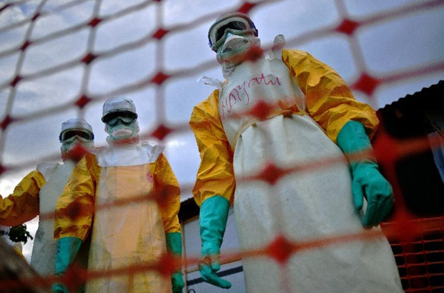 WHO says S. Leone Ebola flare-up over, virus no longer spreading in West Africa