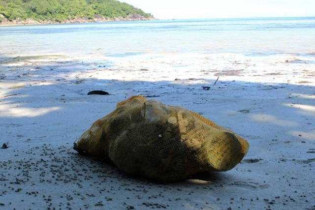 Seychelles' team cleaning beaches as part of Aussie eco-challenge