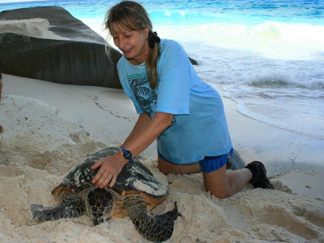 La dame aux tortues des Seychelles  a été récompensée pour toute une carrière consacrée à la conservation des tortues marines