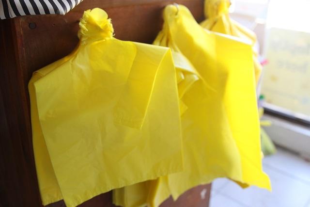 Les Seychelles sans sacs plastique