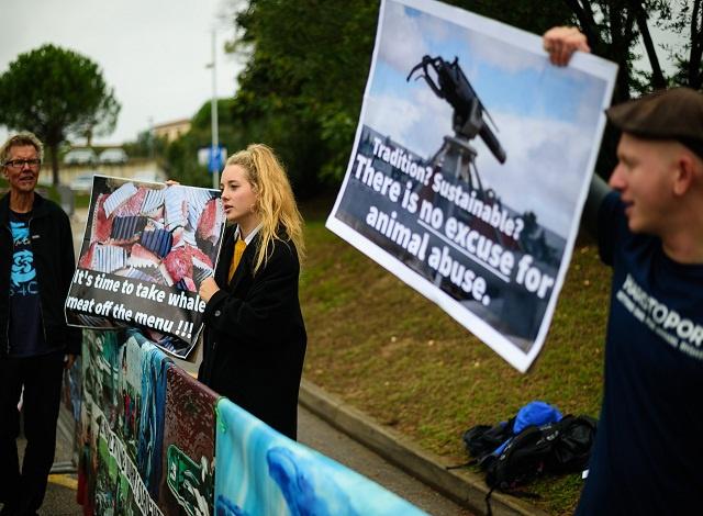Whaling nations sink bid for S. Atlantic sanctuary