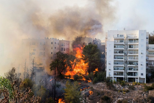 Thousands flee bushfires as Israel alleges 'arson terror'