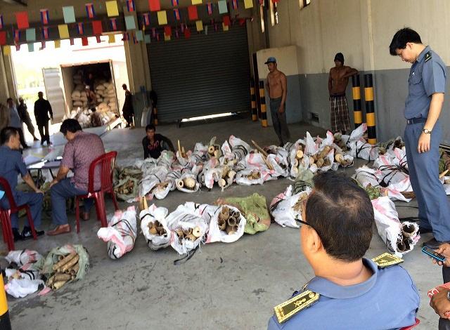 Cambodia seizes huge haul of ivory and animal parts