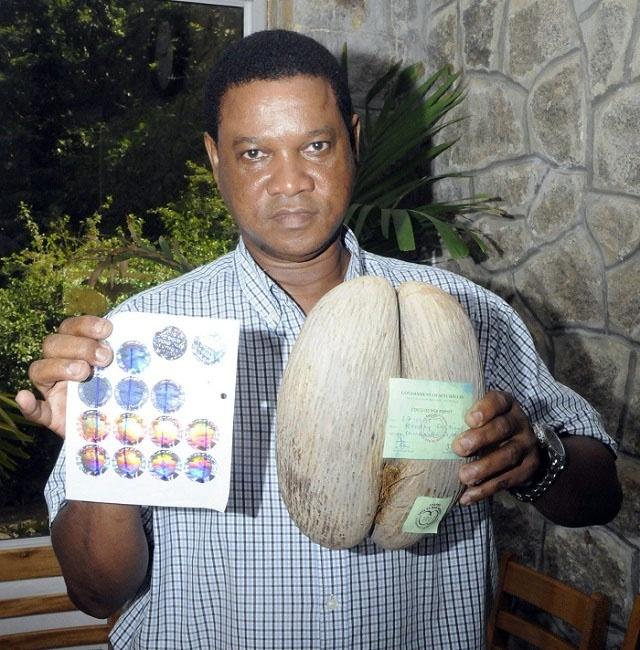 Lutte contre la contrefaçon: Nouvelles étiquettes holographiques du coco de mer introduites aux Seychelles