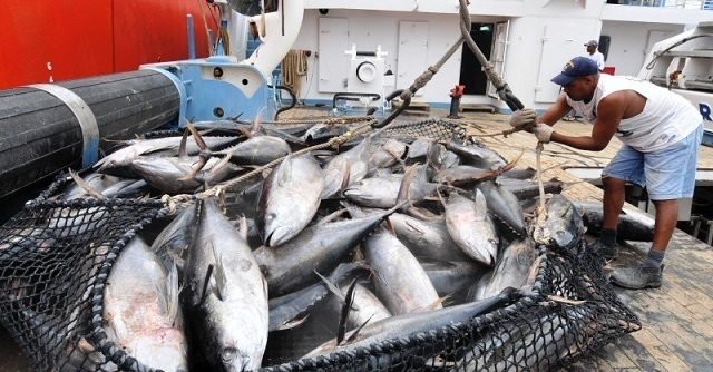 Owners of Spanish tuna purse seiners react to Seychelles' proposed catch restrictions