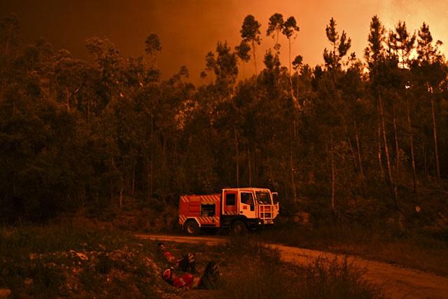 Au moins 43 morts dans un violent feu de forêt au Portugal