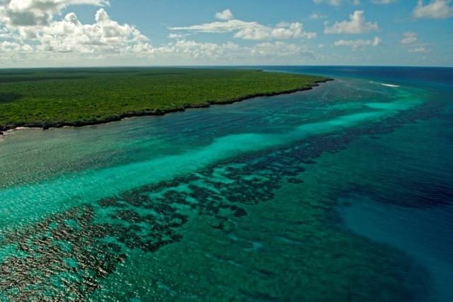 L'augmentation des températures menace les coraux du patrimoine mondial de l'atoll d'Aldabra aux Seychelles.