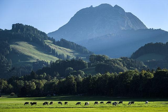 Huit disparus après un glissement de terrain dans les Alpes suisses