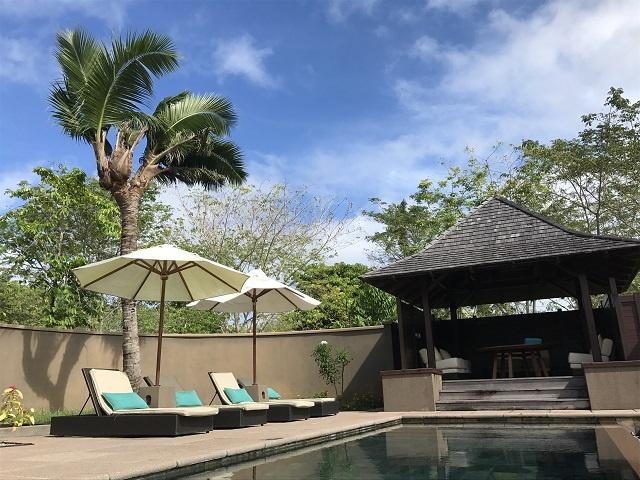Un cocotier d'un hôtel aux Seychelles passe de deux ou trois têtes.