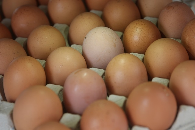 The only good that Seychelles makes enough of to not import? Eggs