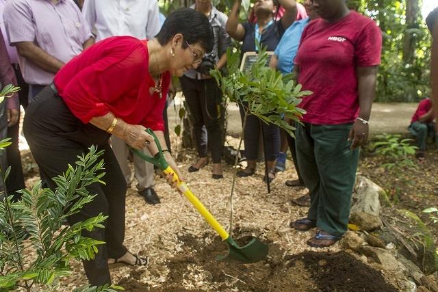 Inauguration du Jardin de la Diversité Indienne, un jardin qui soulignera les liens entre les Seychelles et l'Inde.