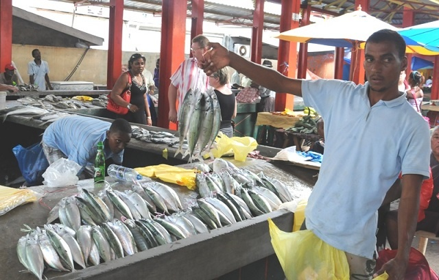 With sea waters calm, mackerel is in abundance in Seychelles' markets