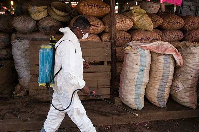 L'épidémie de peste continue à sévir à Madagascar: 74 morts