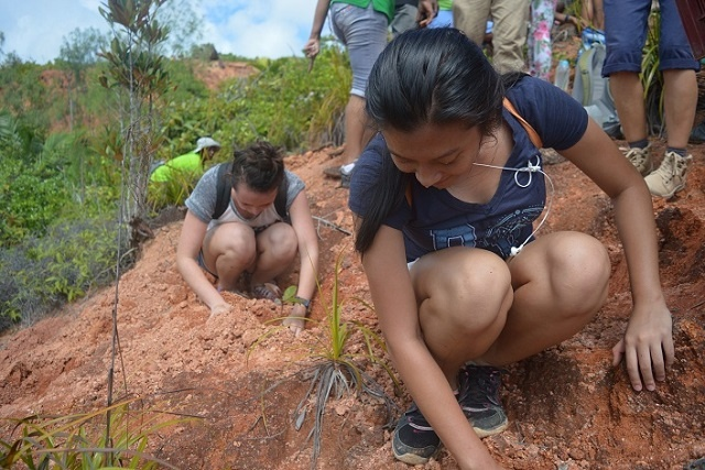 Seychelles among 200 countries planting trees to counter climate change