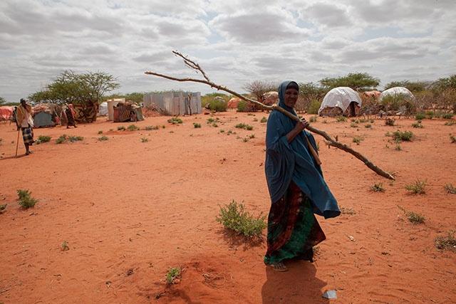 Ethiopie: la sécheresse met en péril le mode de vie nomade