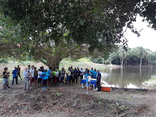 Tree-planting project in Seychelles seeks to preserve watersheds, catchment areas
