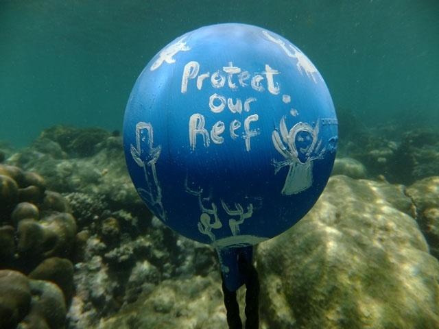 Les Seychelles vont aider l'île de Rodrigues à Maurice avec une gestion durable du corail