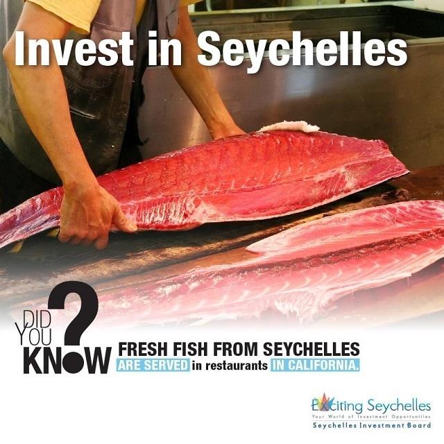 Au premier trimestre l'investissement étranger aux Seychelles atteint 35 millions de dollars
