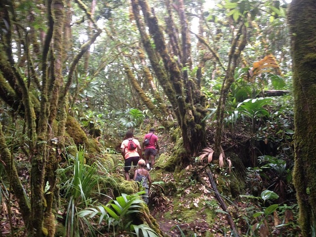 Seychelles National Parks Authority creating official list of island hiking trails