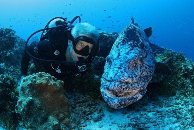 500 mètres de profondeur: des scientifiques britanniques explorent les profondeurs océaniques des Seychelles
