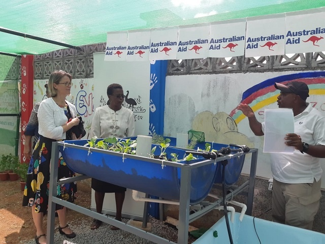 A primary school in Seychelles will grow vegetables using aquaponics