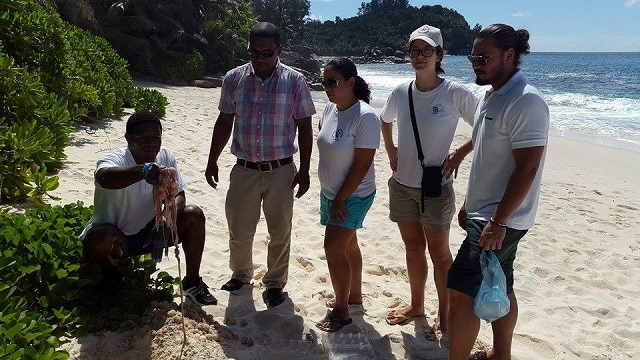 Surveillance of beach in Seychelles to increase after green turtles are poached