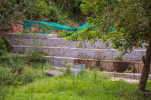Les Seychelles construisent de nouveaux petits réservoirs en utilisant des méthodes naturelles pour stocker l'eau