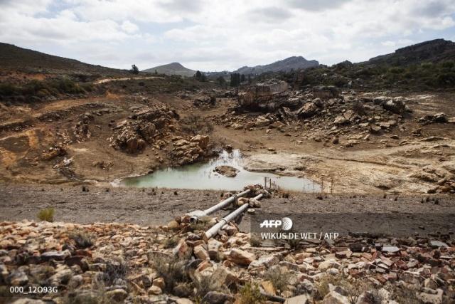 Drought-hit Cape Town should cut down 'alien' trees: study