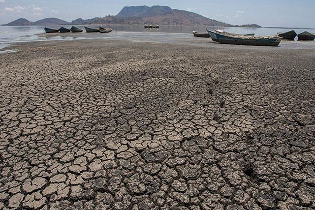 Le monde au chevet de l'urgence climatique