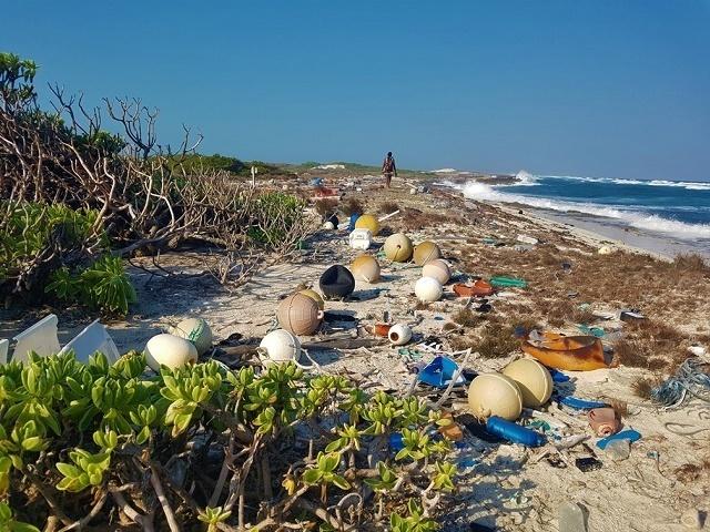 Des experts seychellois étudient le problème des déchets marins aux côtés d'autres gestionnaires de sites du patrimoine mondial de l'UNESCO