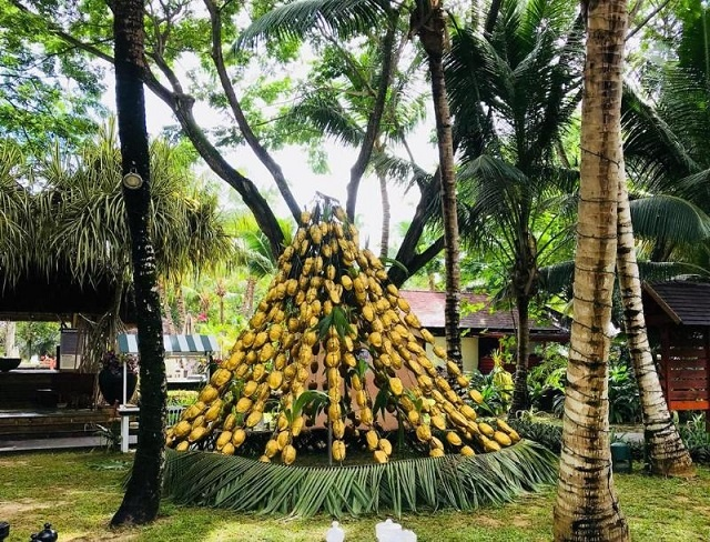 A coconut Christmas tree is among the festive decorations in Seychelles' hotels