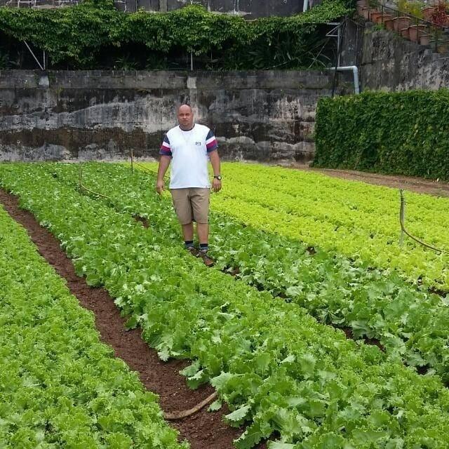 Des agriculteurs seychellois primés lors des business awards 2018