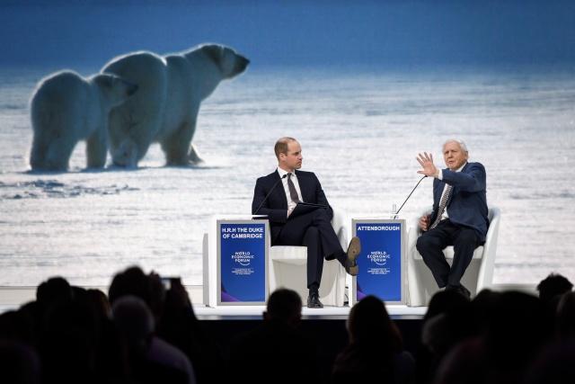 China, Europe follow Brazil's Bolsonaro onto Davos stage