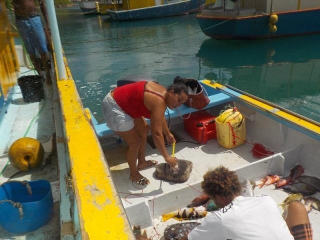 Une communauté de pêcheurs veut des limites sur la taille et la quantité de poissons capturés pour aider les espèces en danger aux Seychelles