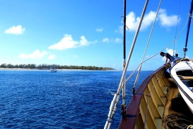 Un éco-camp de tourisme sur une île très reculée des Seychelles, protège les tortues de mer des braconniers