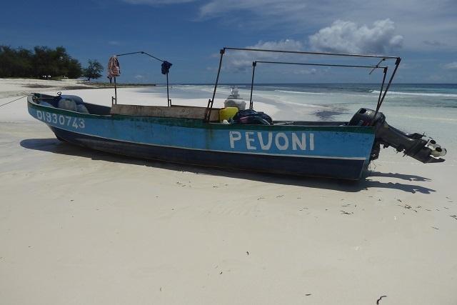 Trois Comoriens sont détenus aux Seychelles pour suspicion de pêche illégale