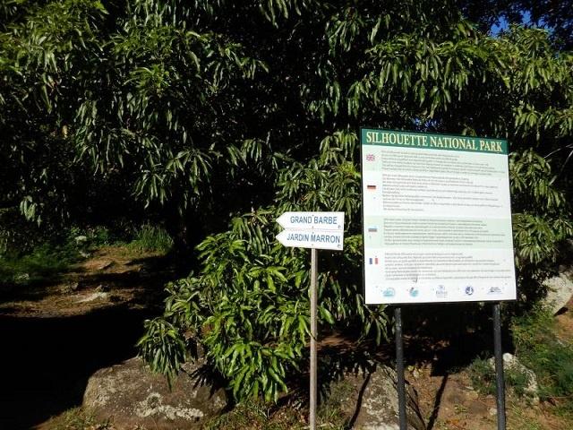 4 reasons to make the trek along the Jardin Marron trail in Seychelles